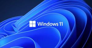 Cum instalezi Windows 11 daca nu ai TPM sau daca procesorul si sistemul nu este suportat?